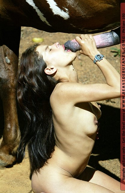 Animal Live Sex Porn  Hot Girl Sucking Massive Horse -9767