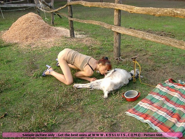 goat sex with girl